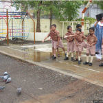 Amritam Project - Bird Feeding